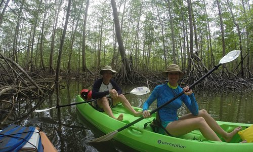 Mangrove Kayak - photo taken by Victor