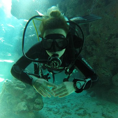 Into the Canion at Dolphin House with Marsaelitedivers