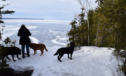 Walking with the dogs around the Georgian Bay via Lions Head Park