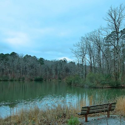 Benches along the walking trails