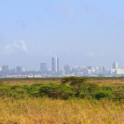 Nairobi National Park with city skyline
