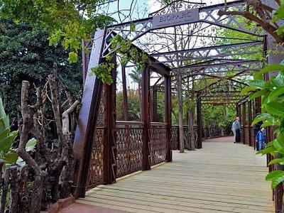 Nuevo puente marzo 2015