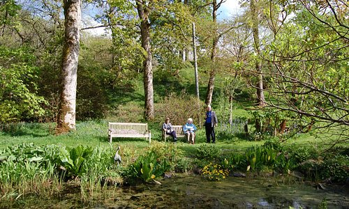 The Woodlands - with lots of benches to pause and enjoy the peace and quiet!