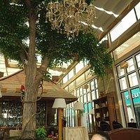 Coffee-shop interior