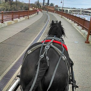 King going over the James J. Hill Stone Arch Bridge.