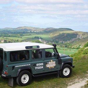 Purbeck Hill's safari