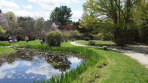 The Stroll Garden Pond
