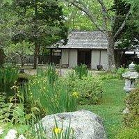 Inside the Japanese Stroll Garden