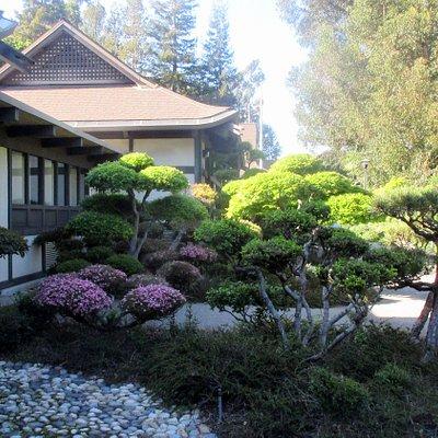 Hayward Japanese Gardens, Hayward, Ca