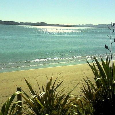Early morning at Oneroa Bay