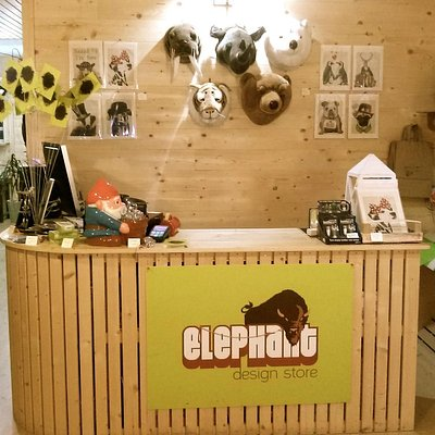 Elephant Store Pesaro