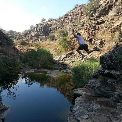 Free falling fun in the Golan