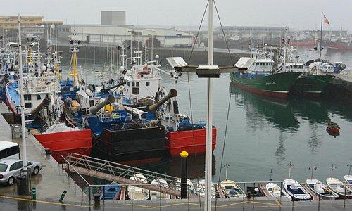 Porto de Getaria