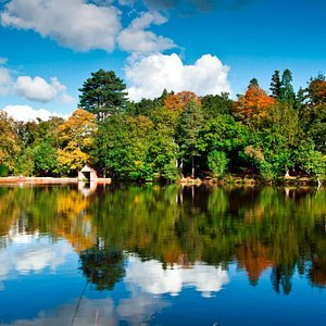 Douster Pond, Buchan Country Park