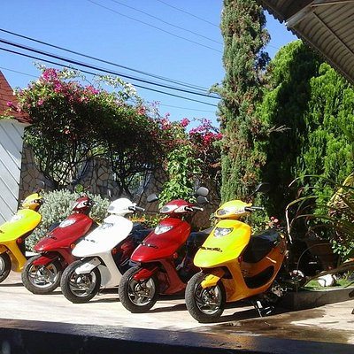 New batch of scooters has arrived
