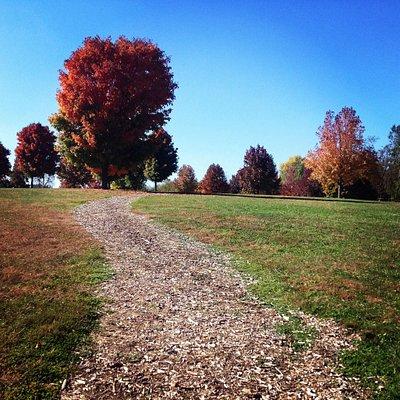 Fall colors at Lake Springfield Park.