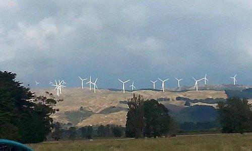 Te Apiti Windfarm 3
