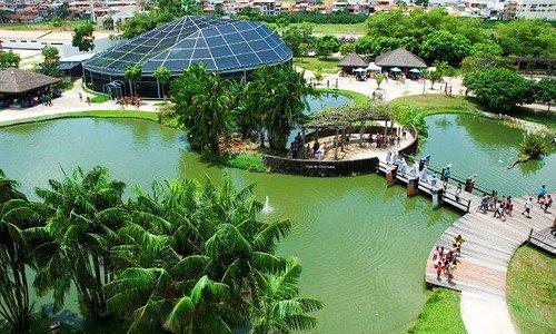 Vista aérea dos lagos do parque