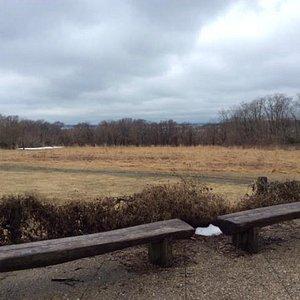 Bird viewing area
