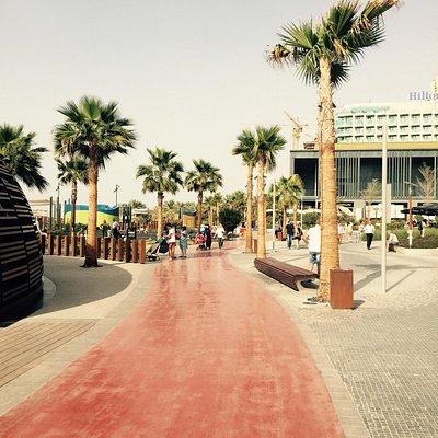 The Beach Center