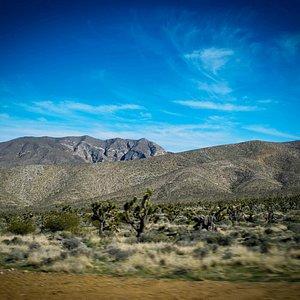 Spring Mountain, NV