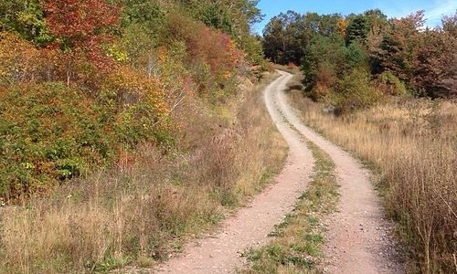 """Hiking up the """"other"""" way-- the less steep trail, not the one by the church."""