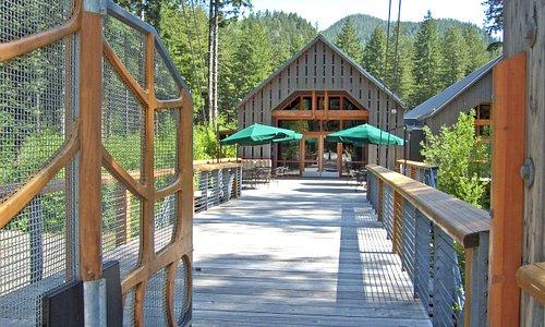 Tillamook Forest Center a gem in the Oregon Coast Range.