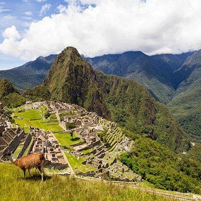 Ciudadela de Machu picchu - Perú Enigmatic