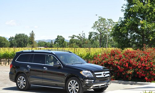 Sonoma's Wine Country Tours