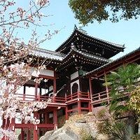 Saihoji Temple 1