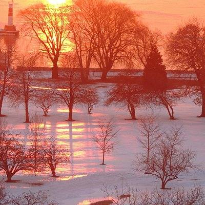 Winter Sunrise over the golf course (they play 365 days)
