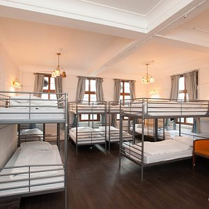 The 22-Bed Dorm at The Walrus Hostel