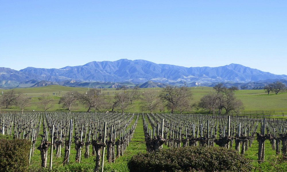San Ynez Valley