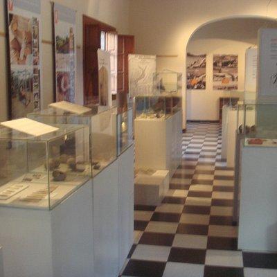 3- La sala de exposicion