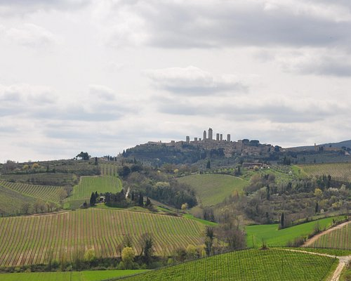 Beautiful Tuscan Countryside with San Gimignano in background