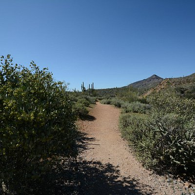 Metate Trail at Spur Cross Ranch Conservation Area