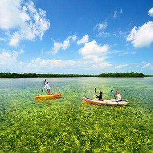 Kayaking in the Key West National Wildlife Refuge.