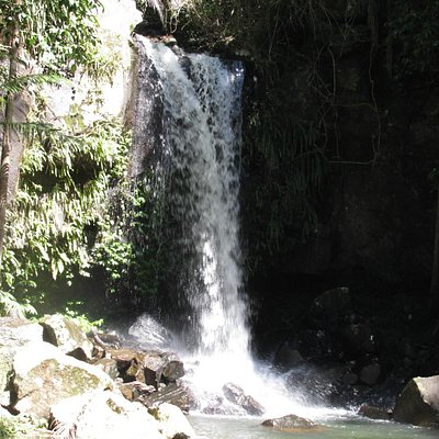Curtis Falls