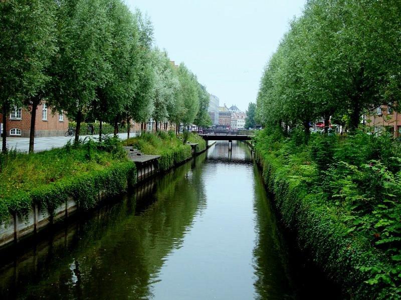 Aarhus - Aboulevarden canary