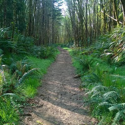 Great Trails