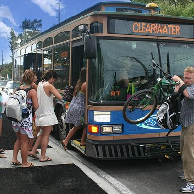 Beach goers avoid parking fees and hassles by using the trolley
