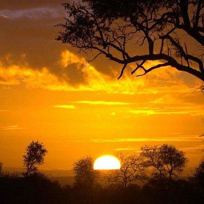 Sunrise - Kruger National Park