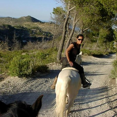 Unique rides in the wild, wonderful North of Ibiza