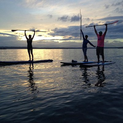 We do paddleboard/SUP tours and rentals too out on the salt water! Lots or sea life to be seen.