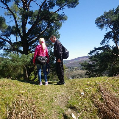 Checking out the views in Wicklow.