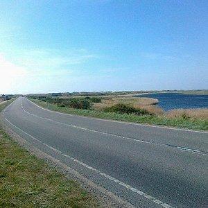 Fra Nymindegab mod Vesterhavet. Esehusene ligger til højre for vejen.
