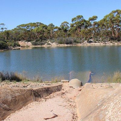 Bromus Dam