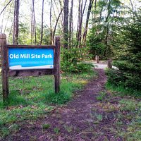 Old Mill Site Park from Shoreline Trail