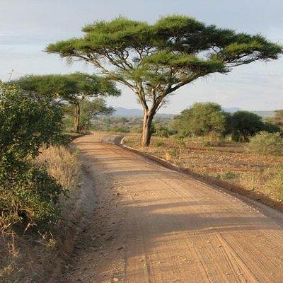 The roads we Journey-Original Tanzania
