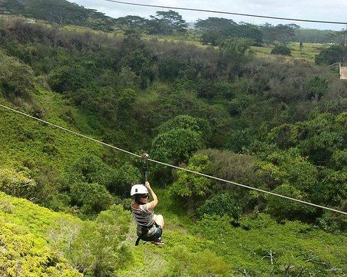 Zipline tour in Kauai